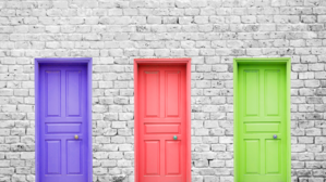 SAP SuccessFactors Support Choices - 3 Doors