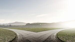 Fork in the road: point solution vs. platform solution