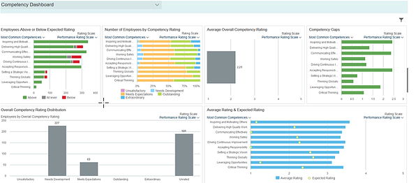 SAP SuccessFactors Competency Dashboard