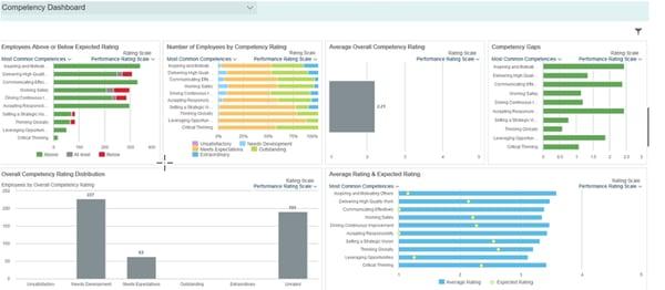 SAP SuccessFactors Competency Dashboard