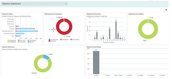 SAP SuccessFactors Objective Dashboard